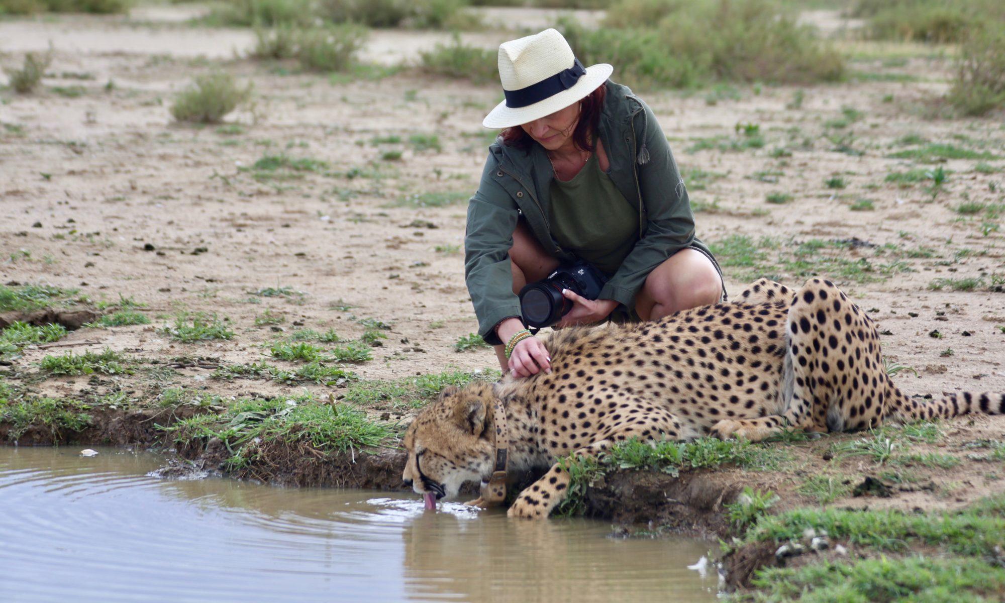 C Africa Safaris